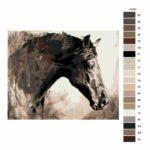 Malování podle čísel Pohled koně