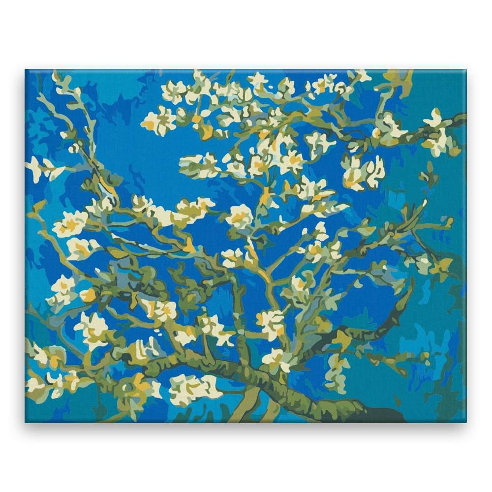 Malování podle čísel Mandlové květy