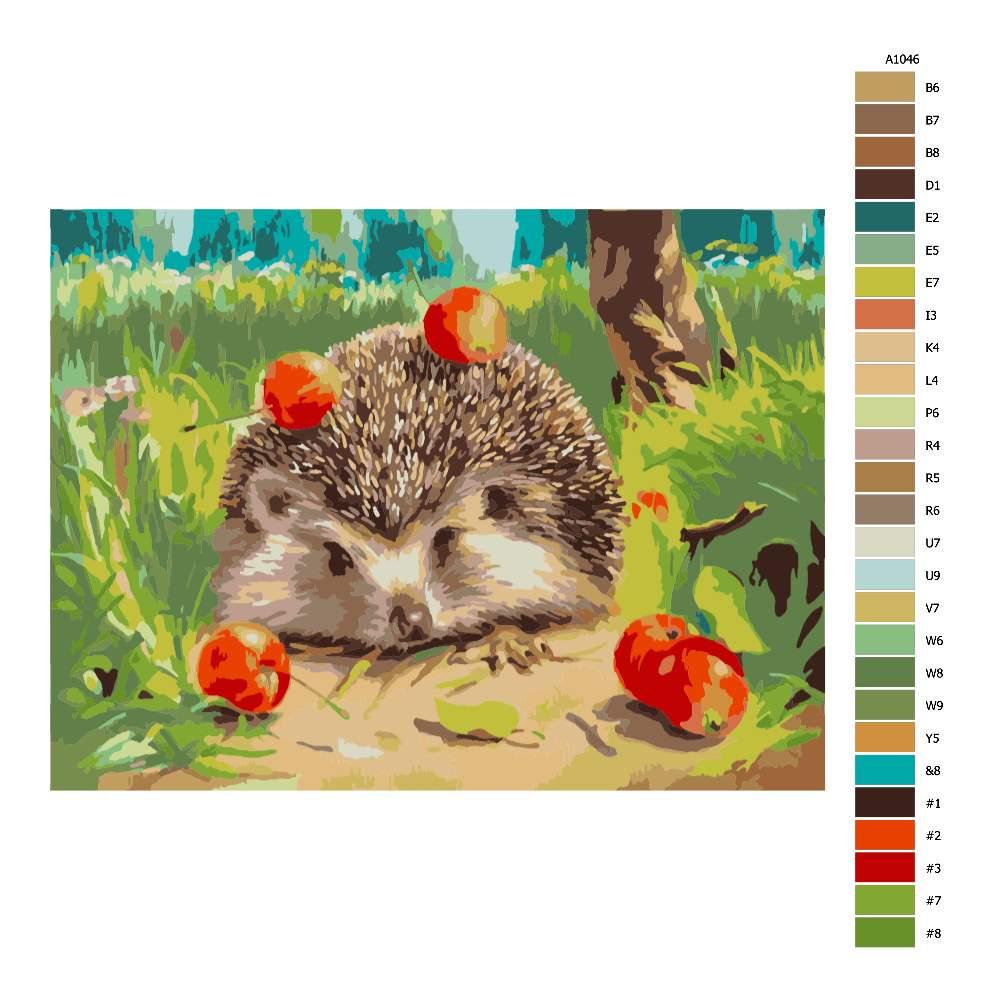 Návod pro malování podle čísel Ježek s jablky