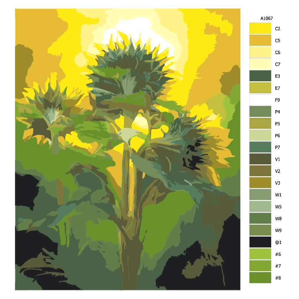 Návod pro malování podle čísel Tři slunečnice