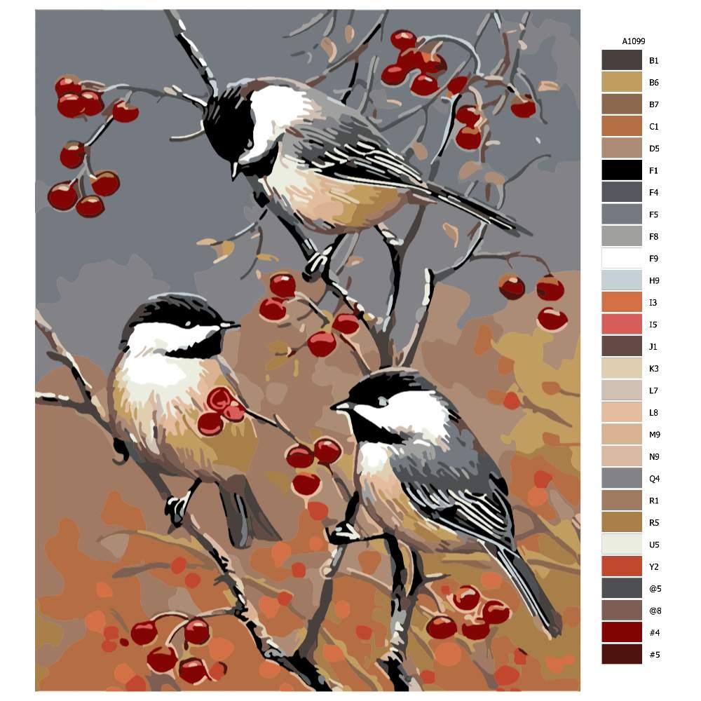 Návod pro malování podle čísel Tři ptáčci