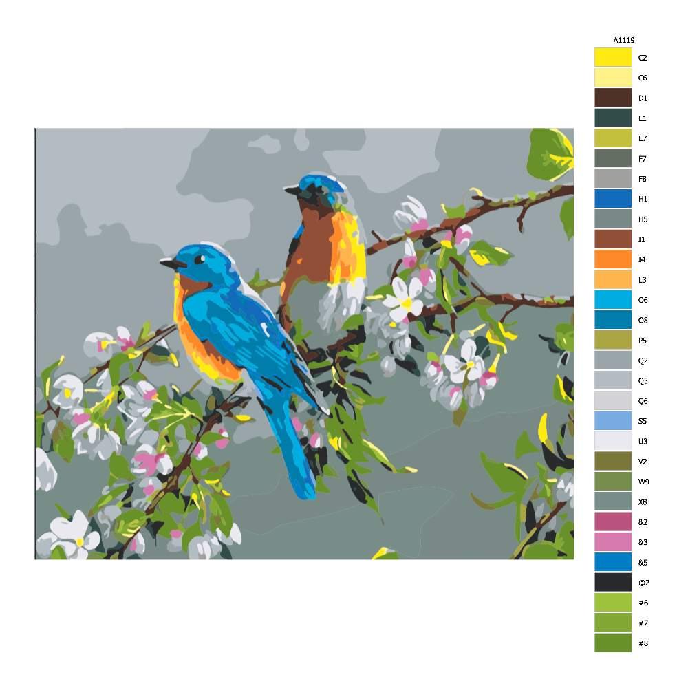 Malování podle čísel Ptáci na větvi