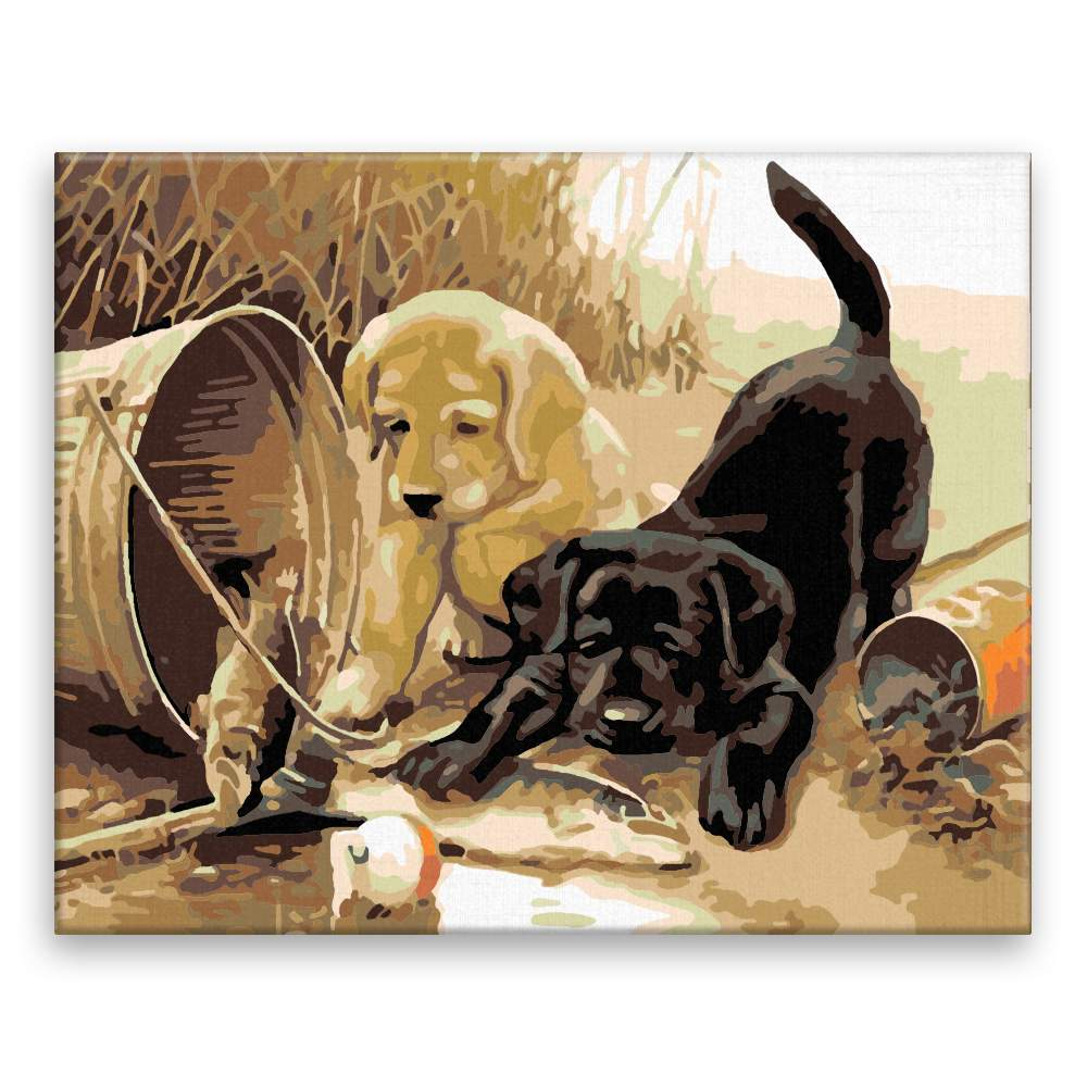 Malování podle čísel Černé a zlaté štěně