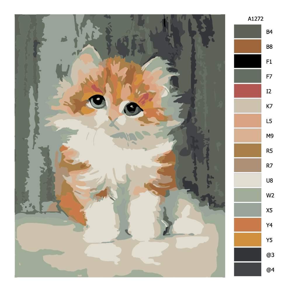 Návod pro malování podle čísel Roztomilé koťátko