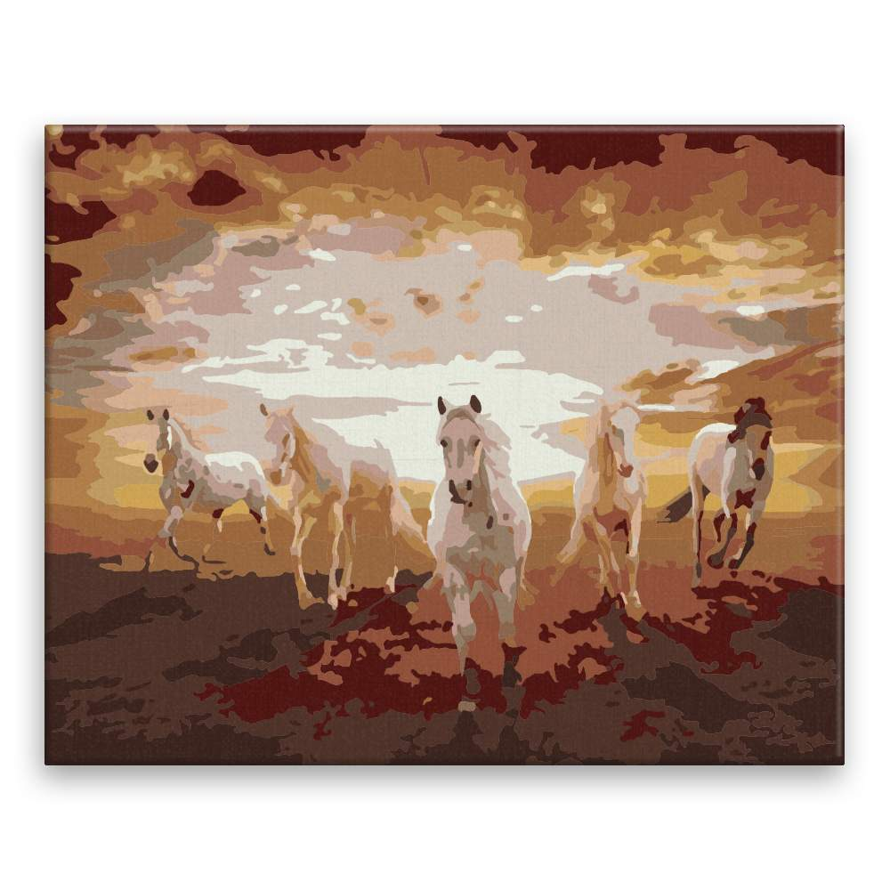 Malování podle čísel Koně při západu