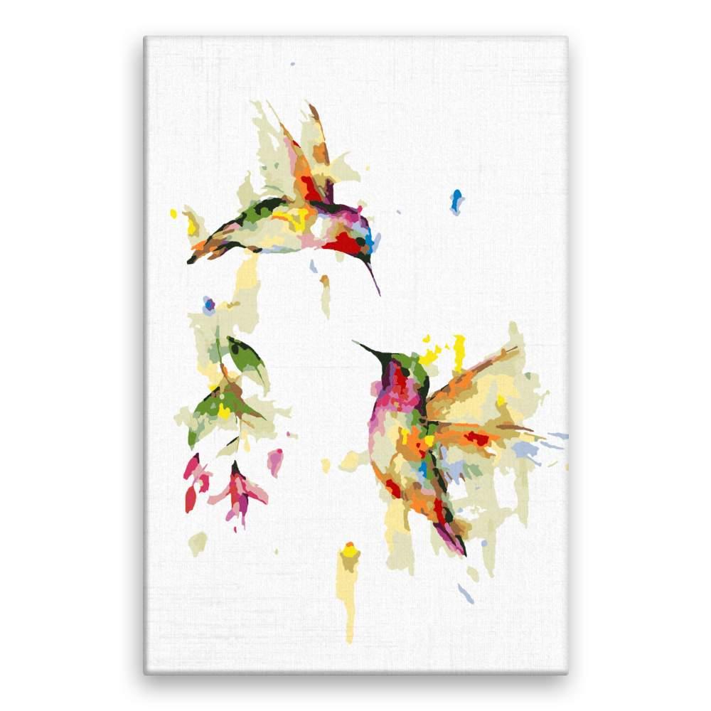 Malování podle čísel Dva kolibříci