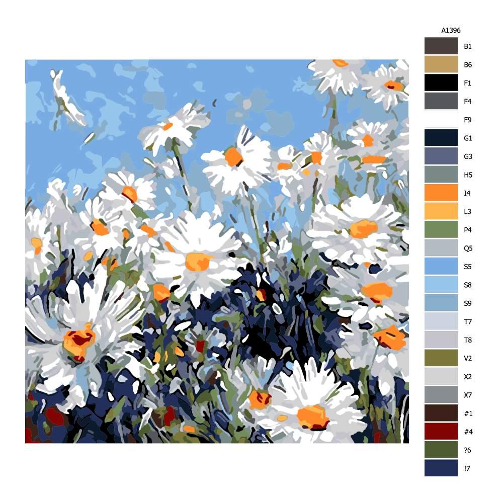 Malování podle čísel Kopretinová louka