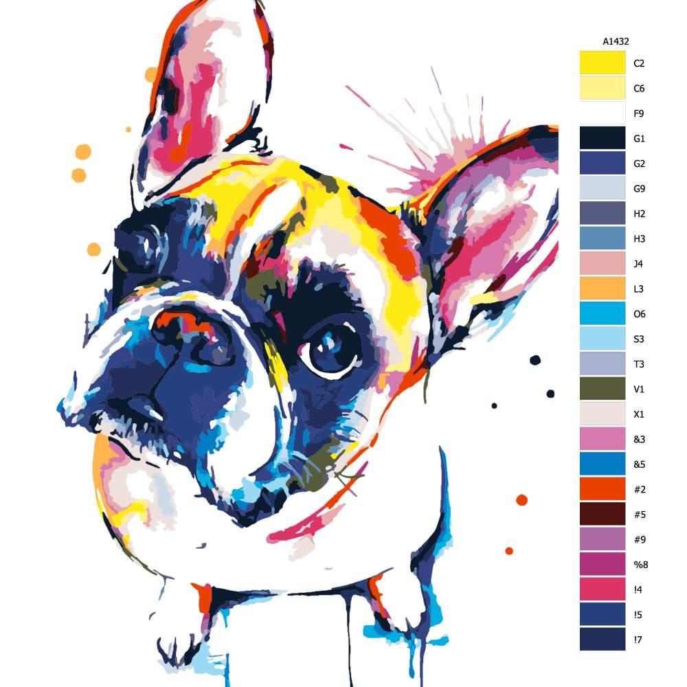 Malování podle čísel Francouzský buldoček v barvách