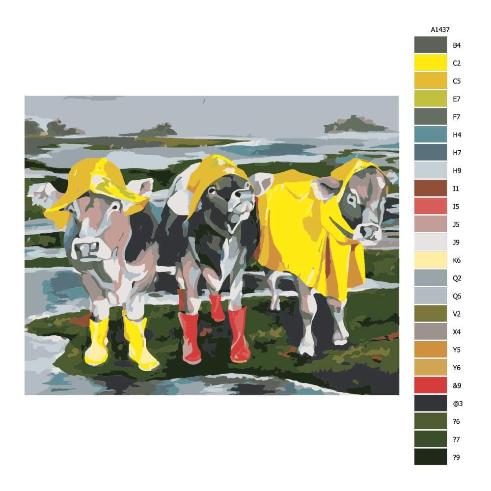 Návod pro malování podle čísel Dámy v dešti