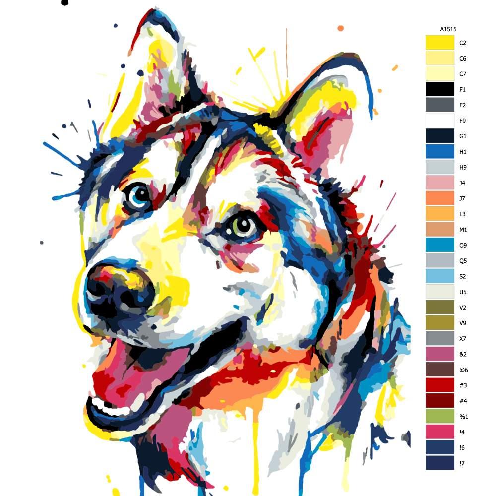 Návod pro malování podle čísel Husky v barvách