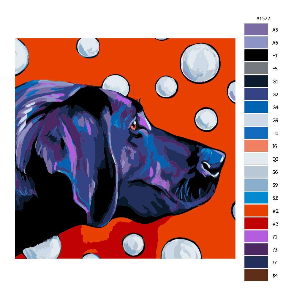 Malování podle čísel Labrador s bublinami