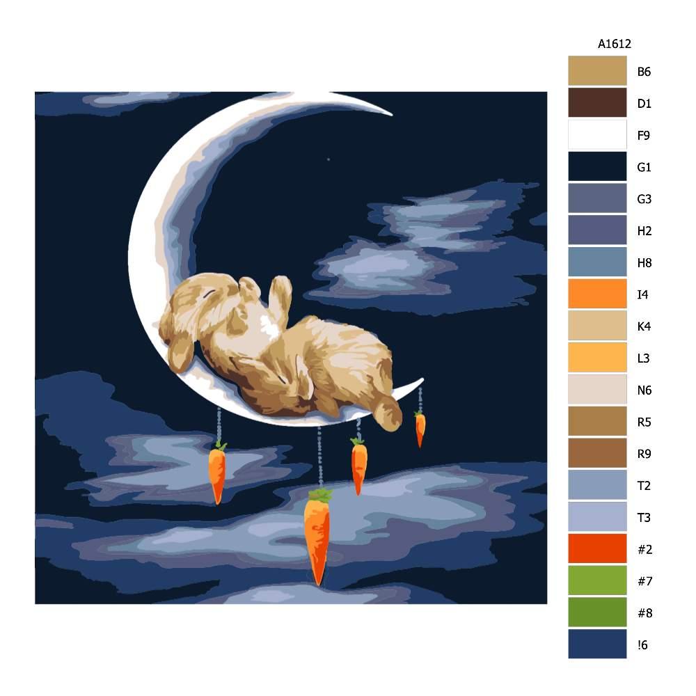 Malování podle čísel Spí na měsíci