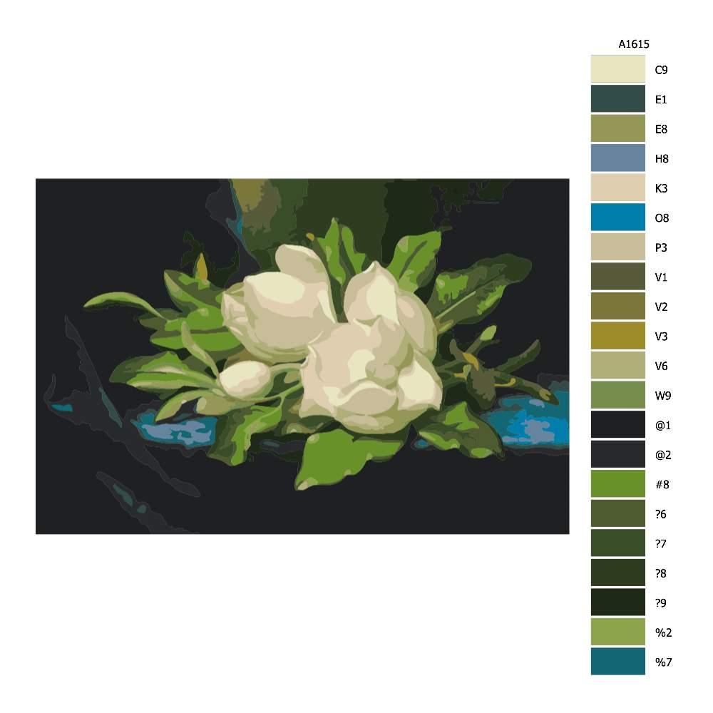 Návod pro malování podle čísel Magnolie na modrém velvetu