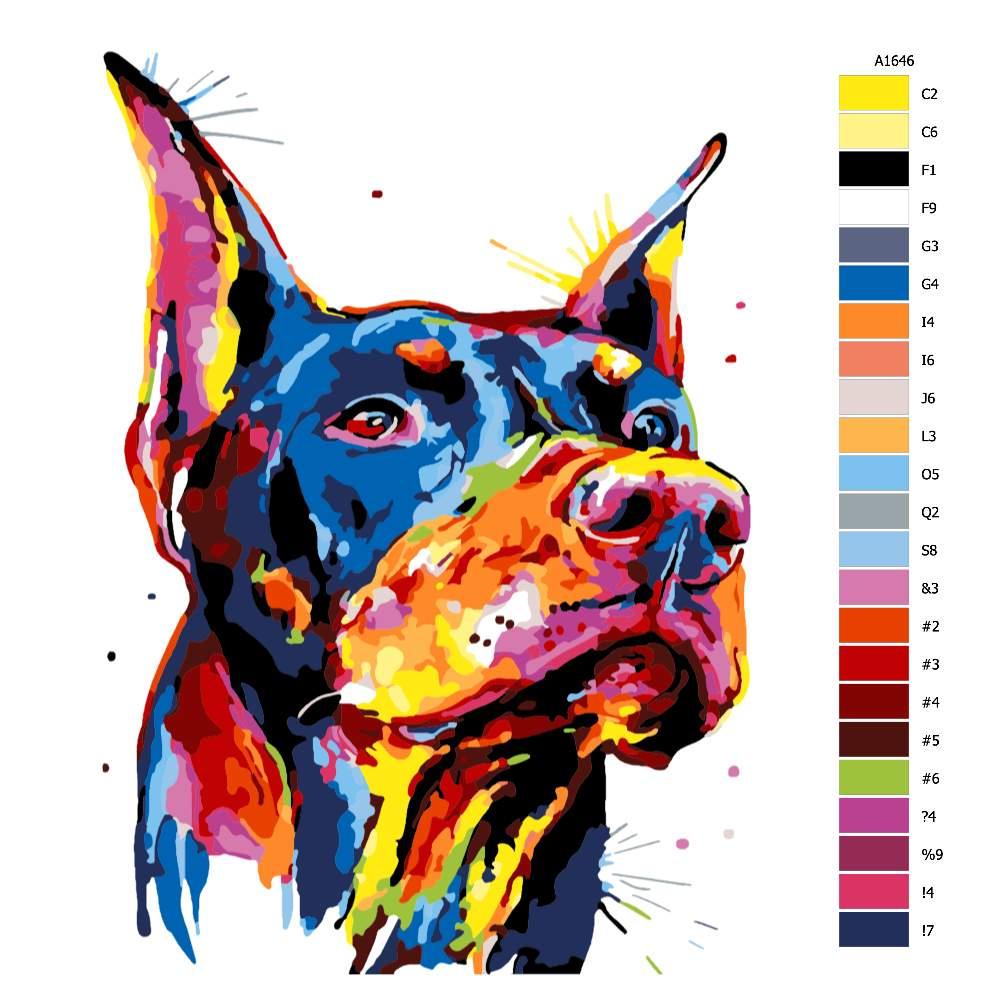 Návod pro malování podle čísel Dobrman v barvách