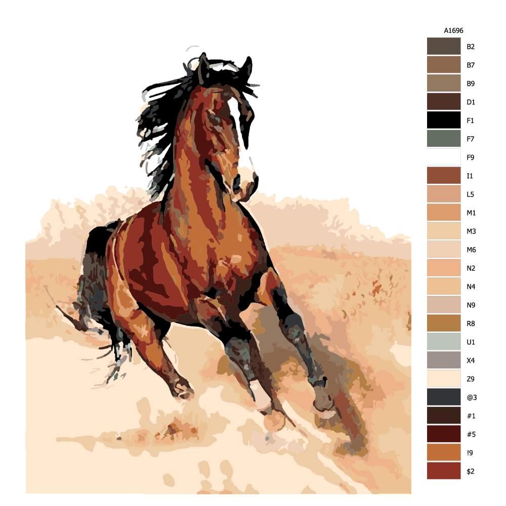 Návod pro malování podle čísel Kůň v klusu