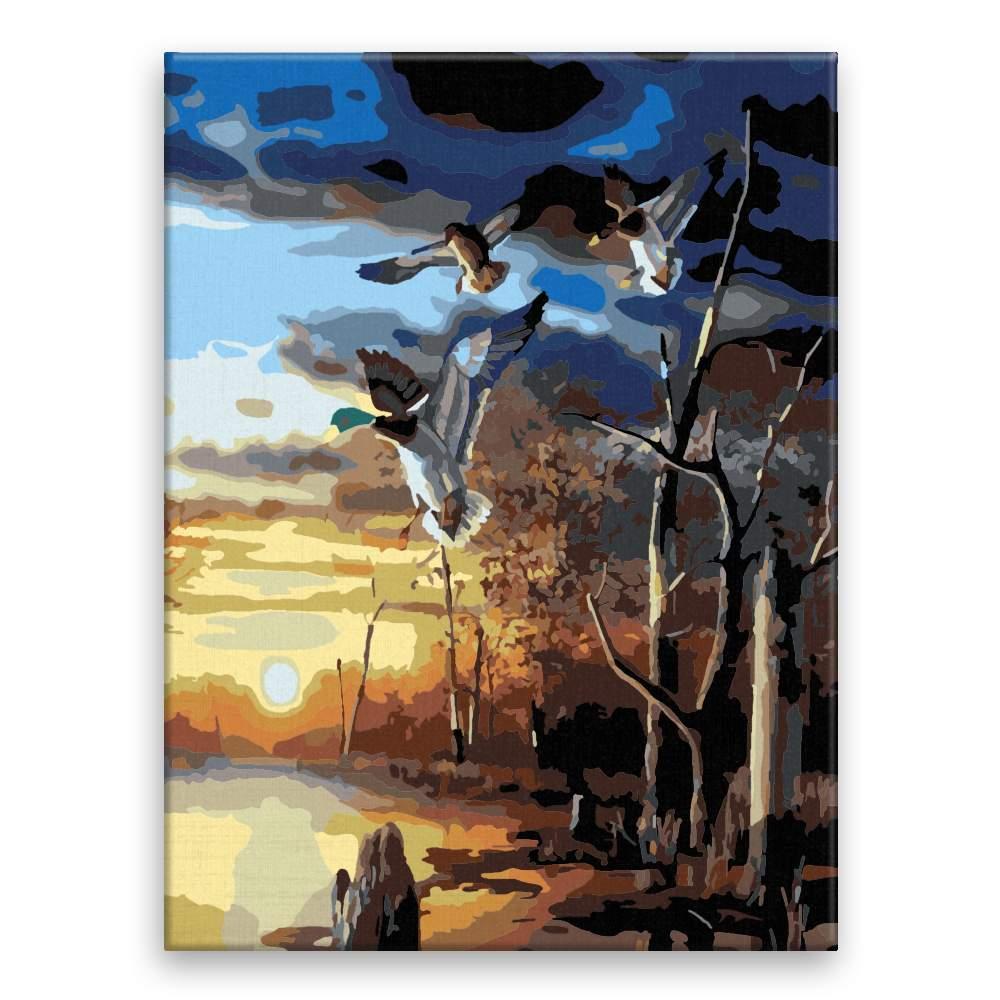 Malování podle čísel Kachny nad rybníkem