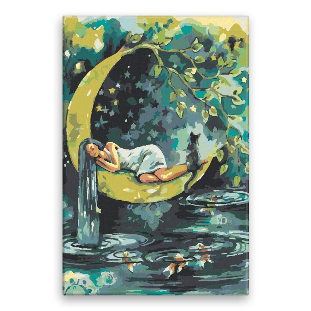 Malování podle čísel Spící na měsíci