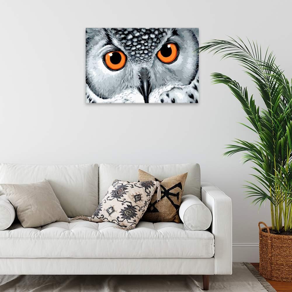 Malování podle čísel Oranžové oči sovy