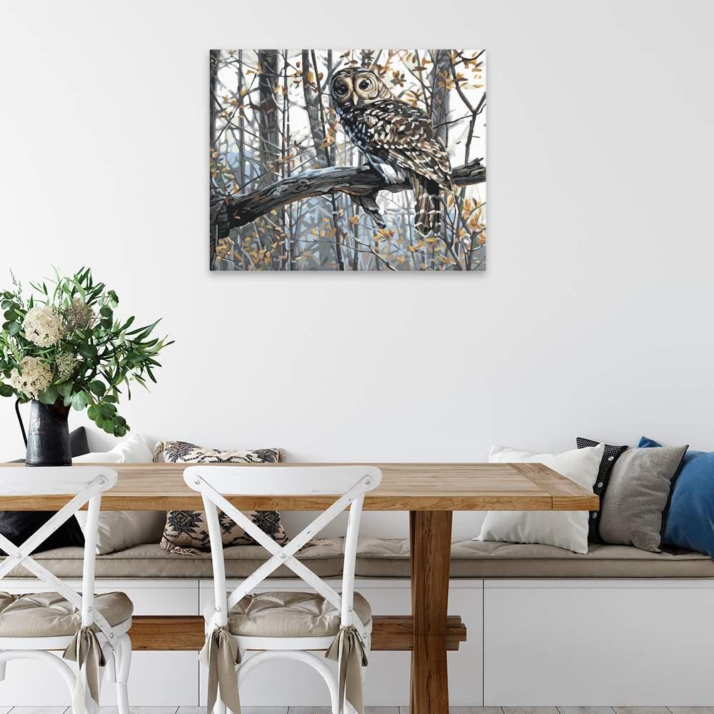 Malování podle čísel Sova na větvi