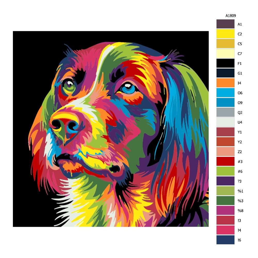 Malování podle čísel Psí pohled v barvách