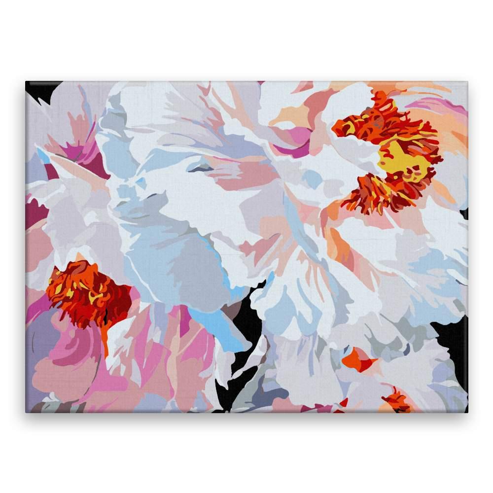 Malování podle čísel Pestrobarevné květy