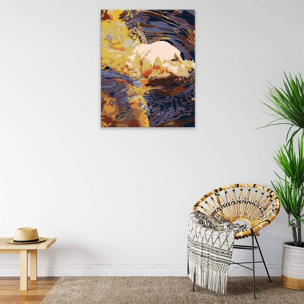 Malování podle čísel Hravý pes ve vodě