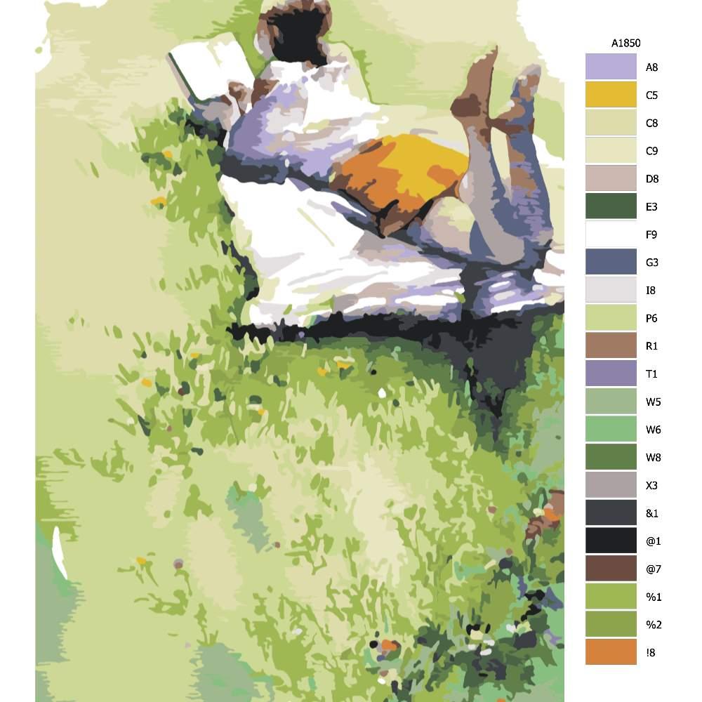 Návod pro malování podle čísel S knížkou v trávě