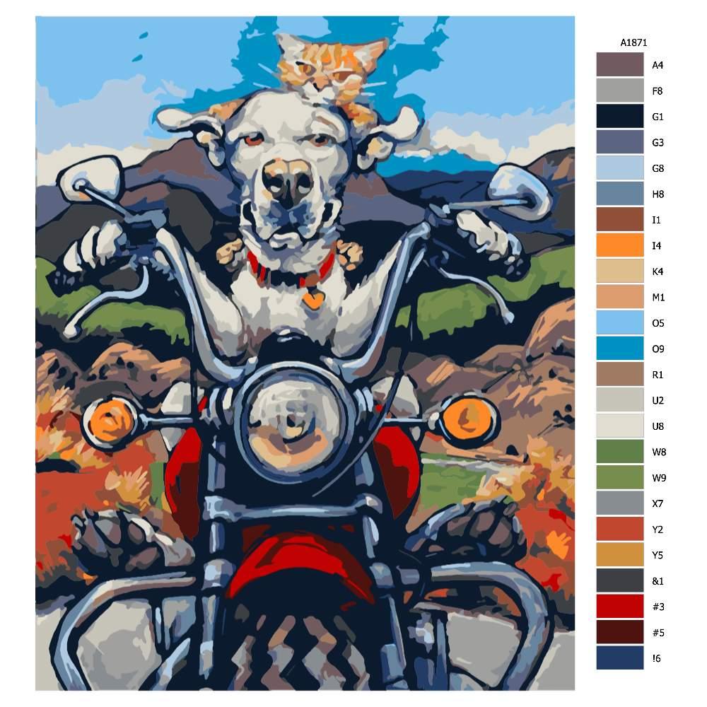 Návod pro malování podle čísel Pes s kočkou na motorce
