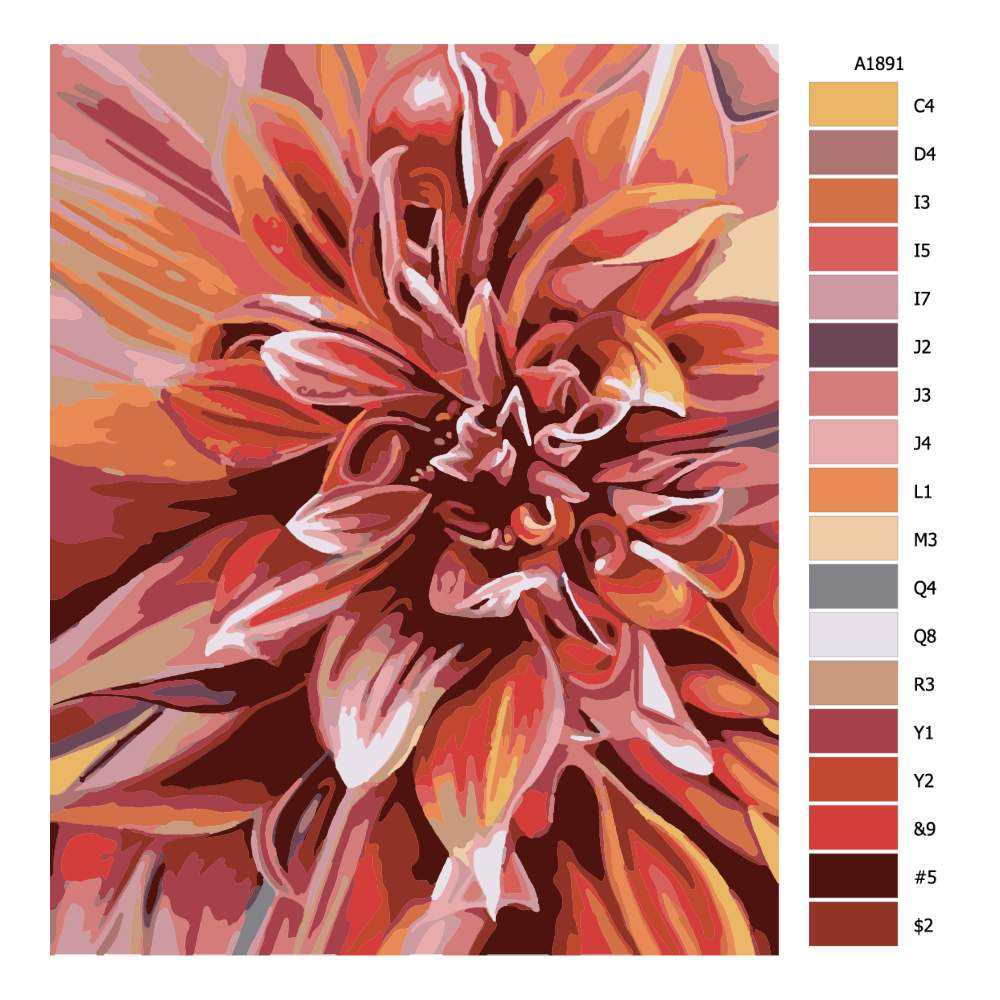 Malování podle čísel Světlice barvířská