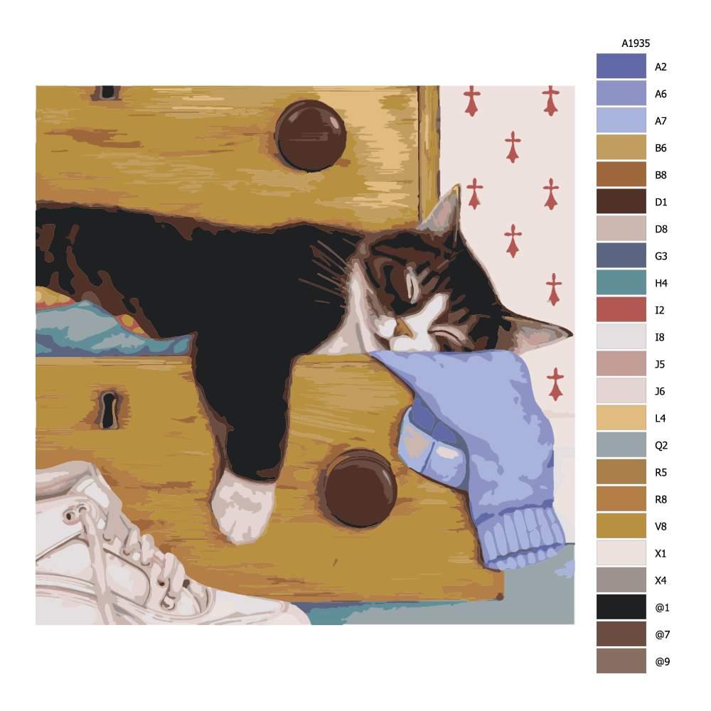 Malování podle čísel Spící mourek