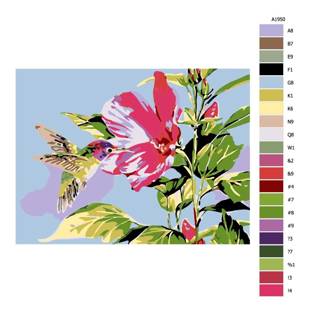 Návod pro malování podle čísel Kolibřík u květu