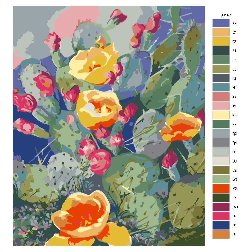 Návod pro malování podle čísel Kvetoucí kaktusy