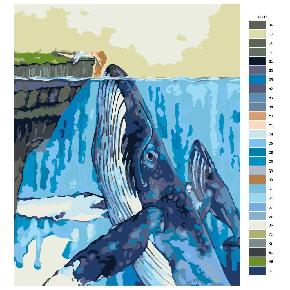 Návod pro malování podle čísel Přátelství s velrybou
