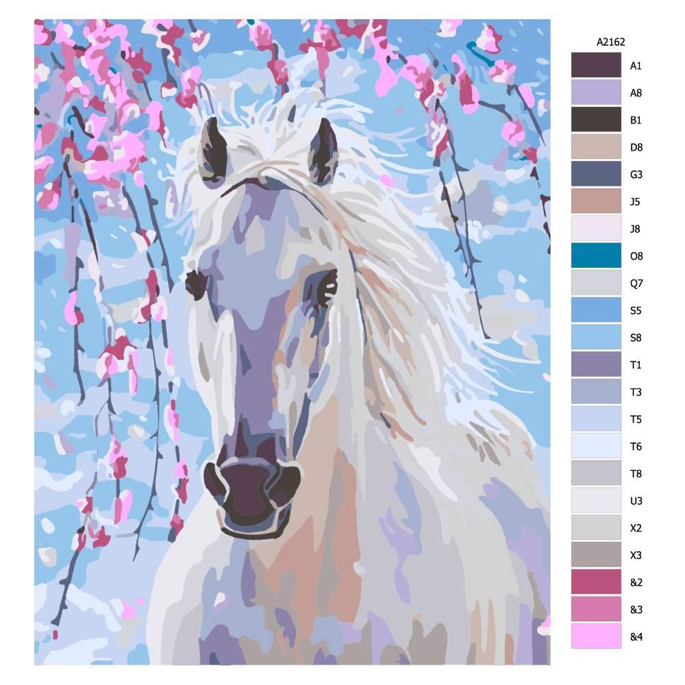 Malování podle čísel Okouzlující bílý kůň