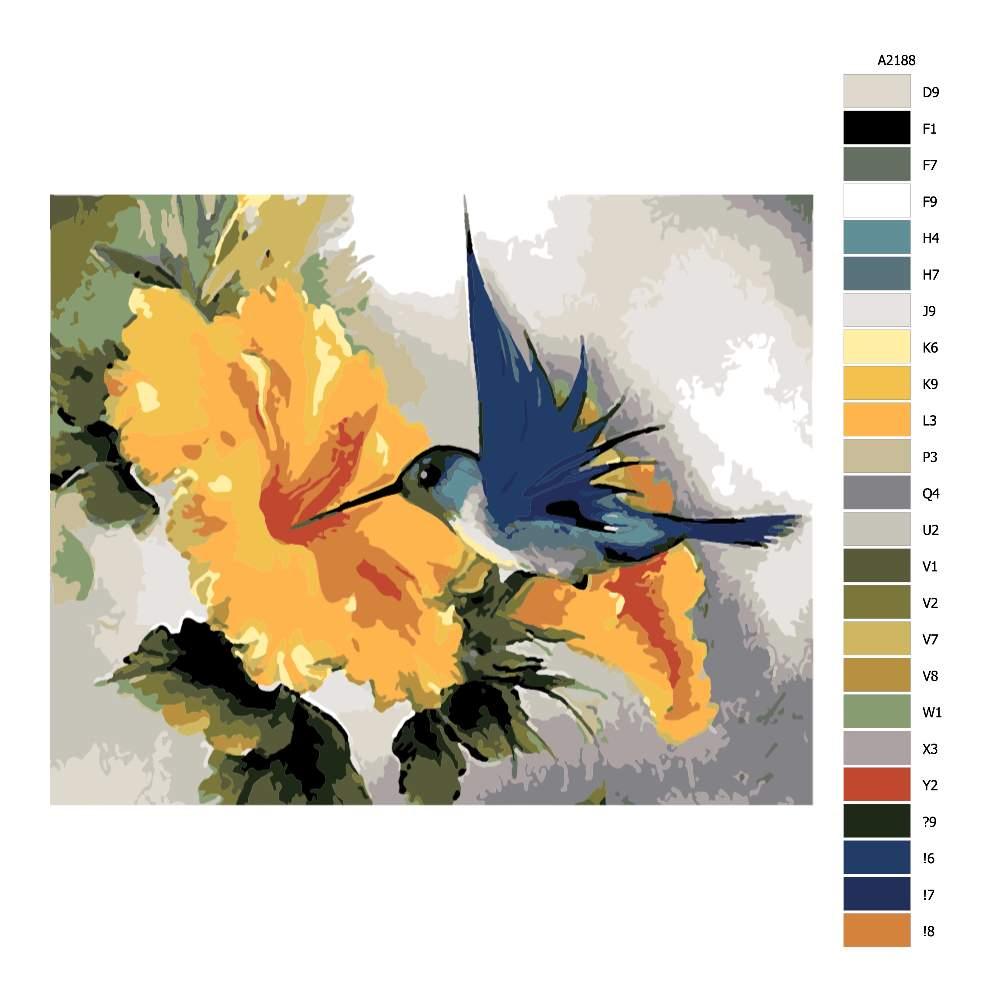 Návod pro malování podle čísel Kolibřík a žlutý květ